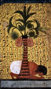 dattero egizi
