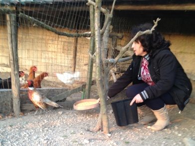 Antonietta nel suo pollaio