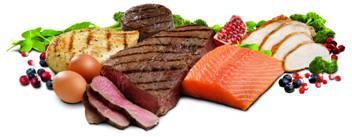 Pesce, carne, uova e verdure sono la base alimentare consigliata al gruppo 0