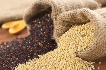 La quinoa è una buona alternativa al frumento