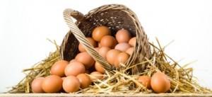 Le uova molto consigliati al gruppo B