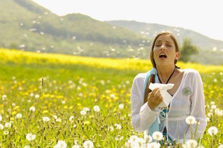 allergia da pollini