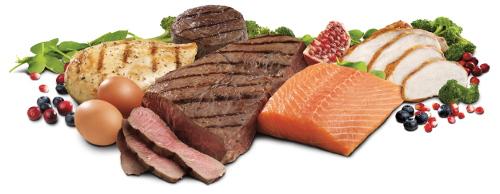 Carne e pesce, la base della dieta consigliata dal Dott. Mozzi